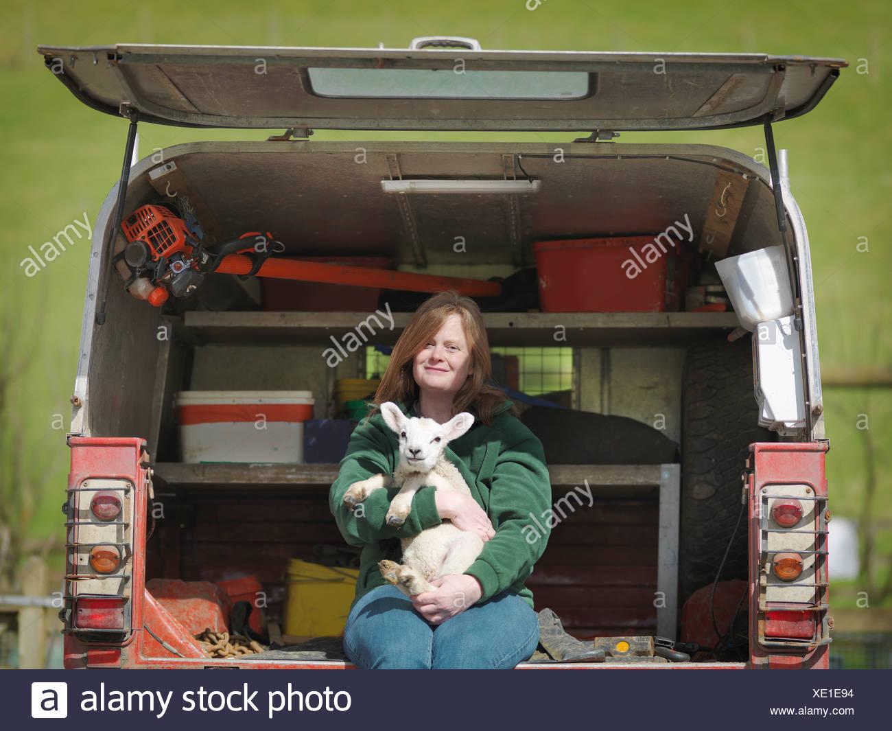 Woman sitting in van boot holding lamb - Stock Image