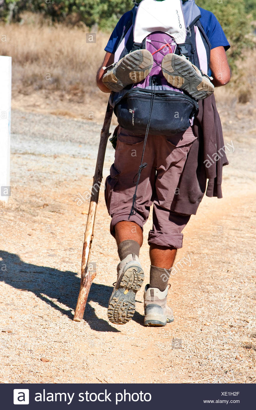 pilgrim on its way to Rabanal del Camino, Spain, Kastilien & Le�n, Leon, Weg von El Ganso nach Rabanal de - Stock Image