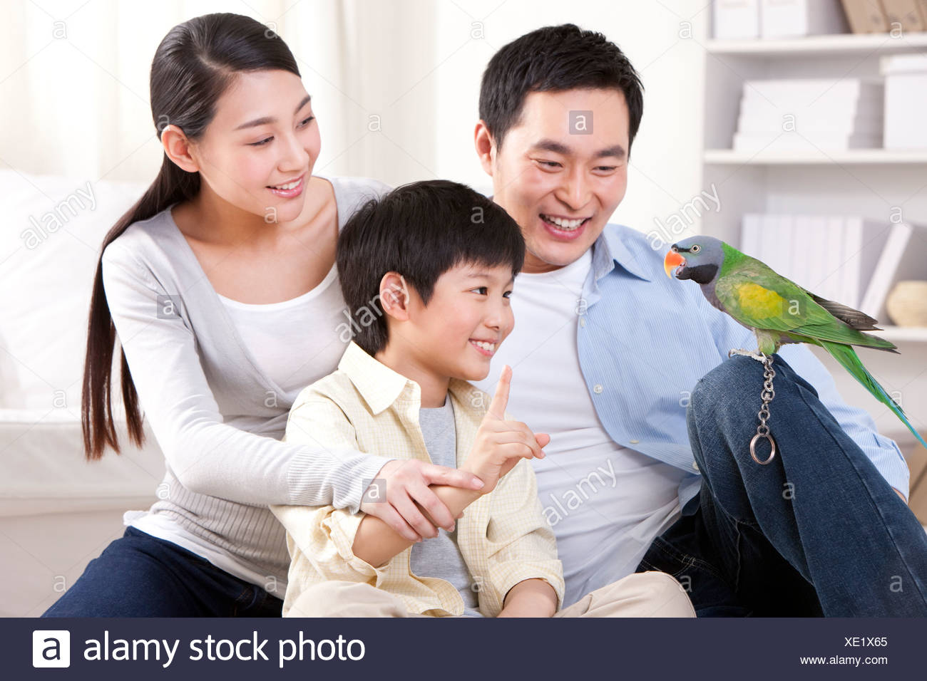 Family playing with a pet parrot - Stock Image