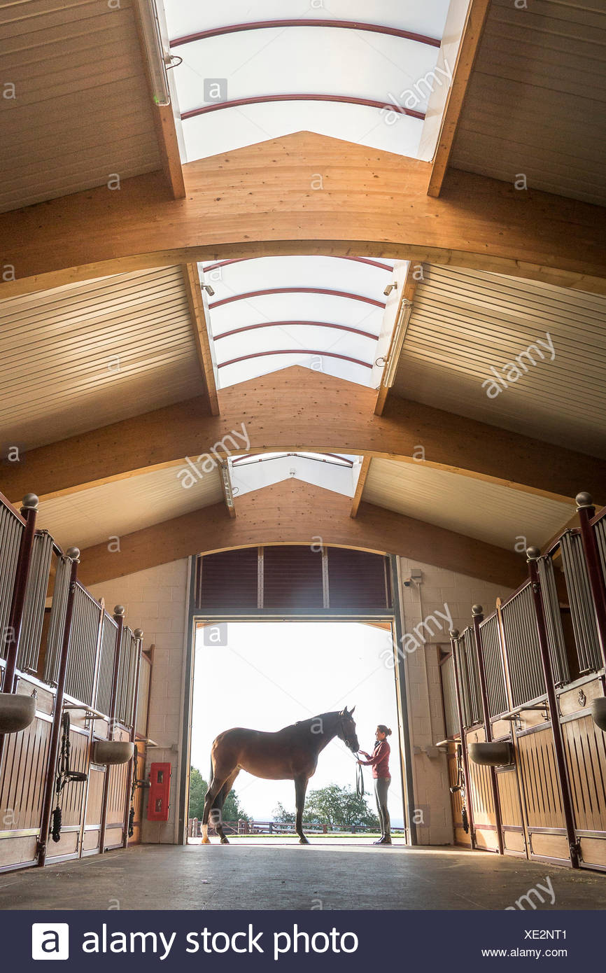 Hanoverian Horse. Bay mare with groom standing at the entrance to a spacious stable. Great Britain - Stock Image