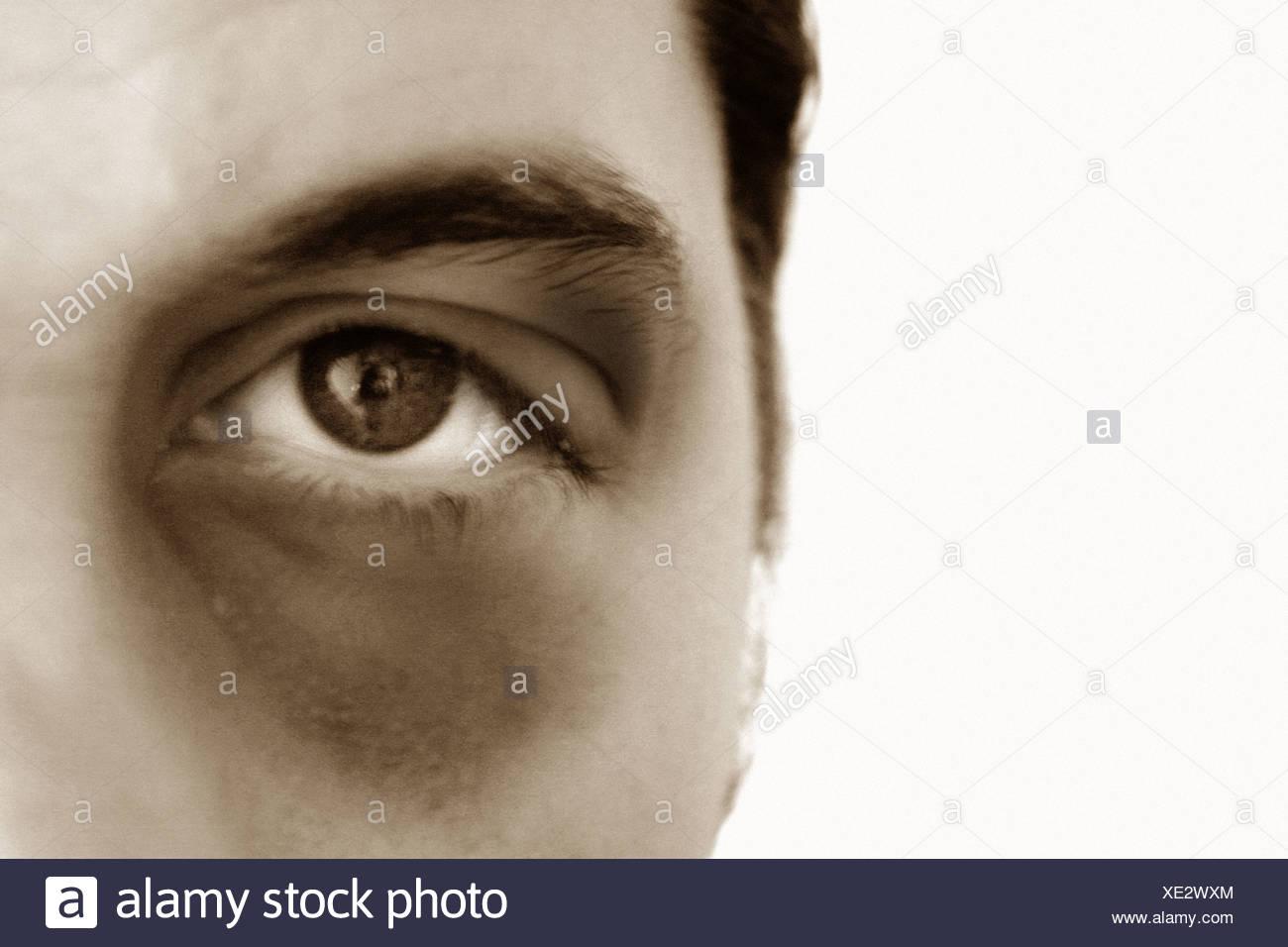 blackeye - Stock Image