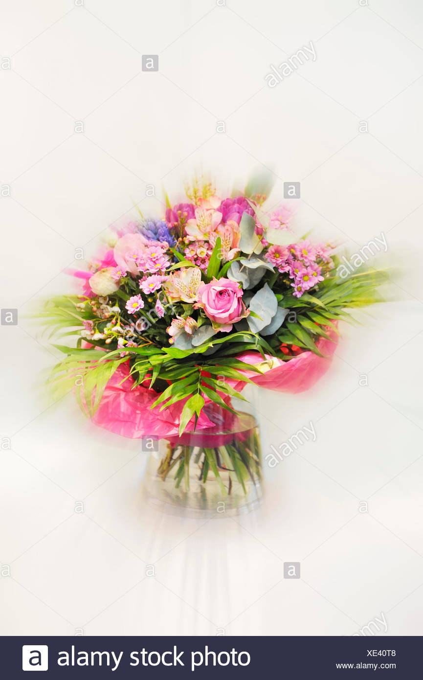 Bouquet in a glass vase against white background - Stock Image
