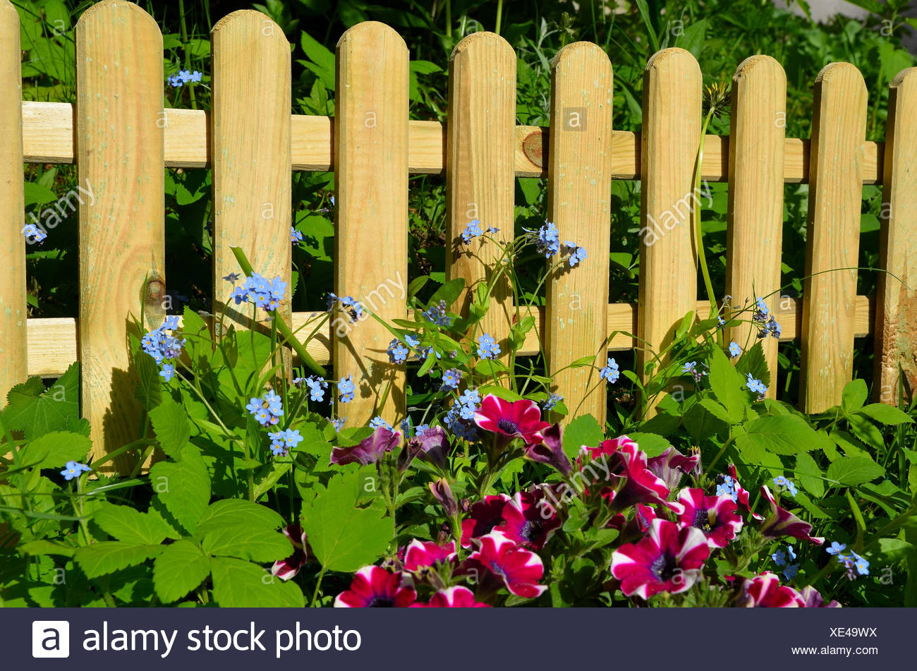 Wood Bed Fence Fence In Fencing Garden Fence Wooden Fence