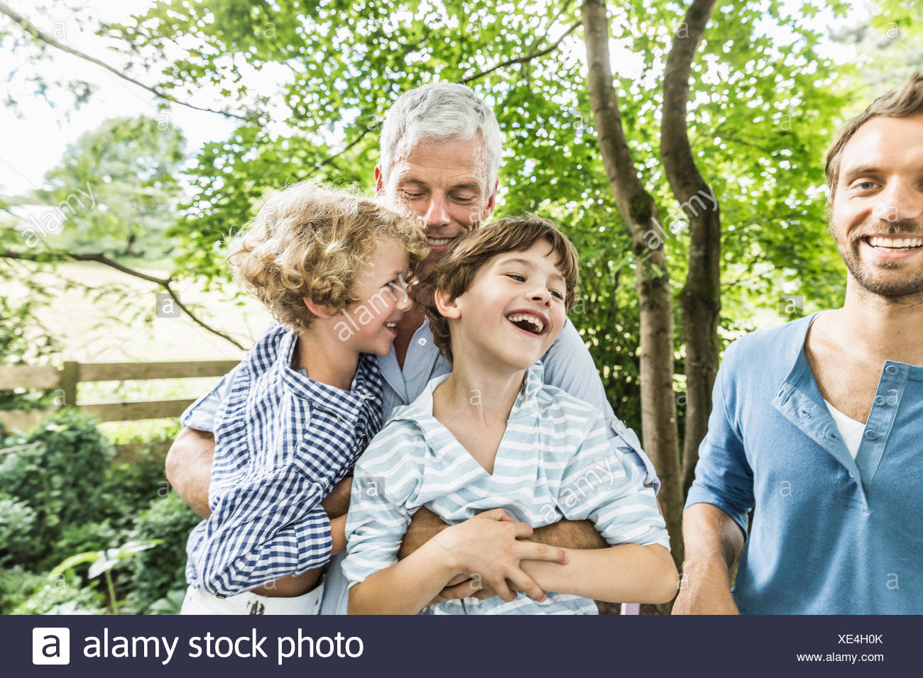 Mature man with grandsons sitting on his lap in garden Stock Photo