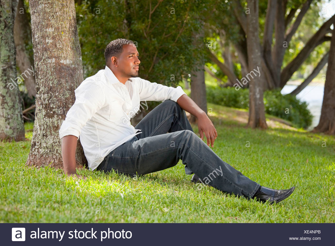 Fort Lauderdale, Florida, United States Of America; Portrait Of A Man Sitting Against A Tree In A Park - Stock Image