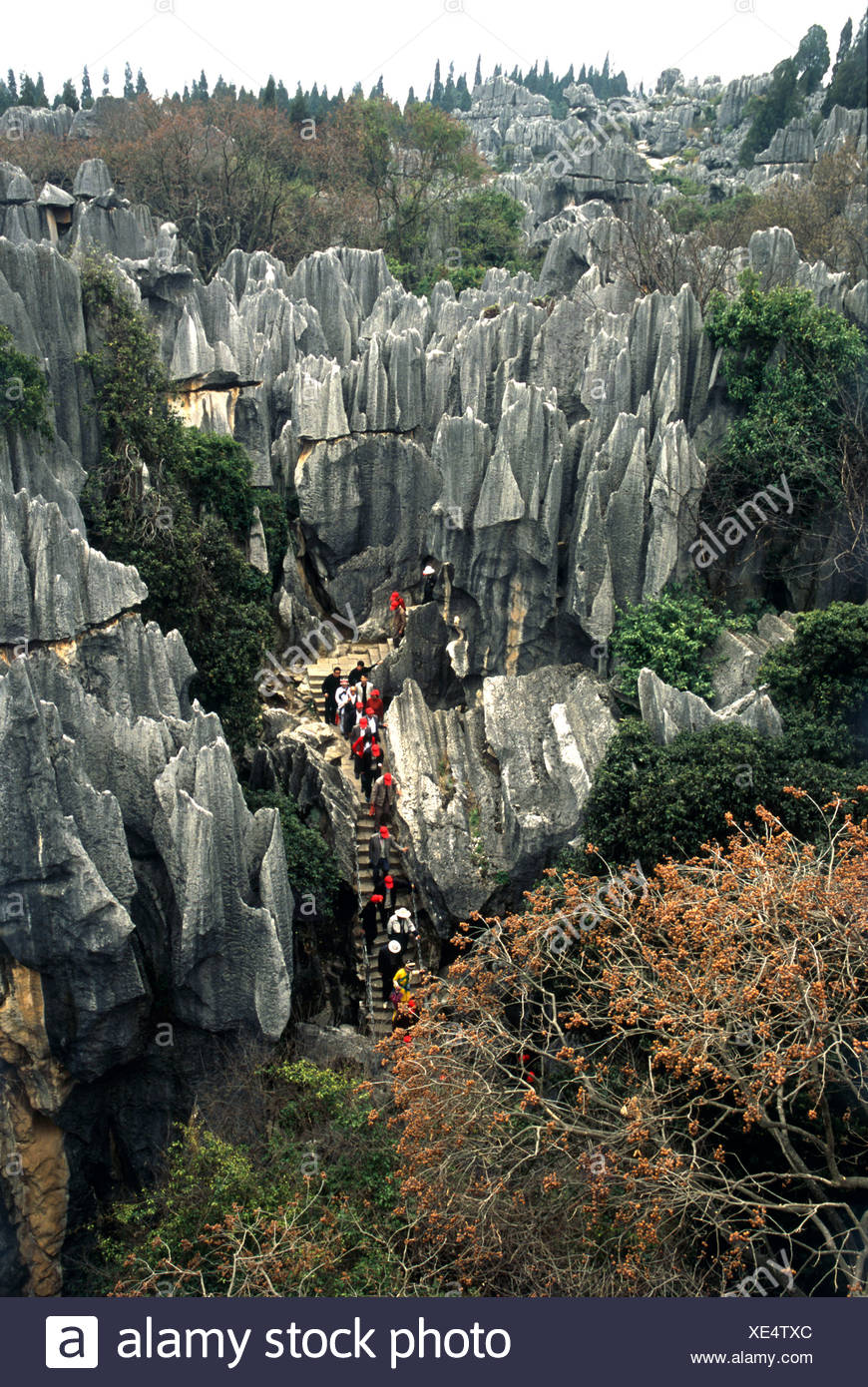 China, Yunnan, Stone Forest, Shin Lin, visitors on stone steps  leading through center of karst formations - Stock Image