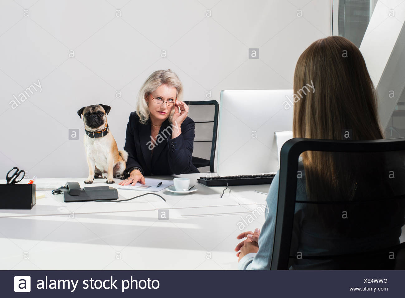 Female manager with dog interviewing woman - Stock Image