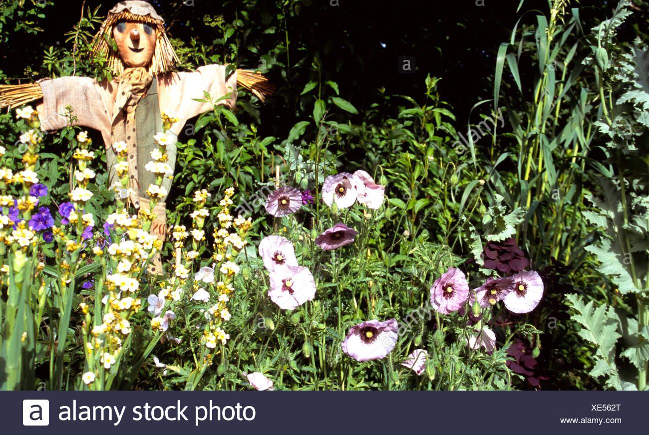 Kent And Essex Gardens Garden With Straw Scarecrow Purple