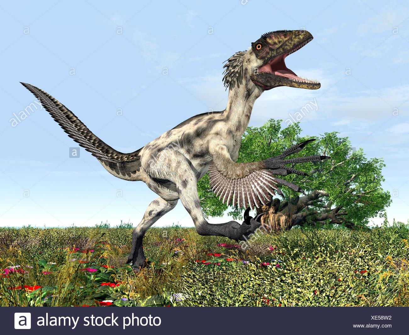 dinosaur deinonychus - Stock Image