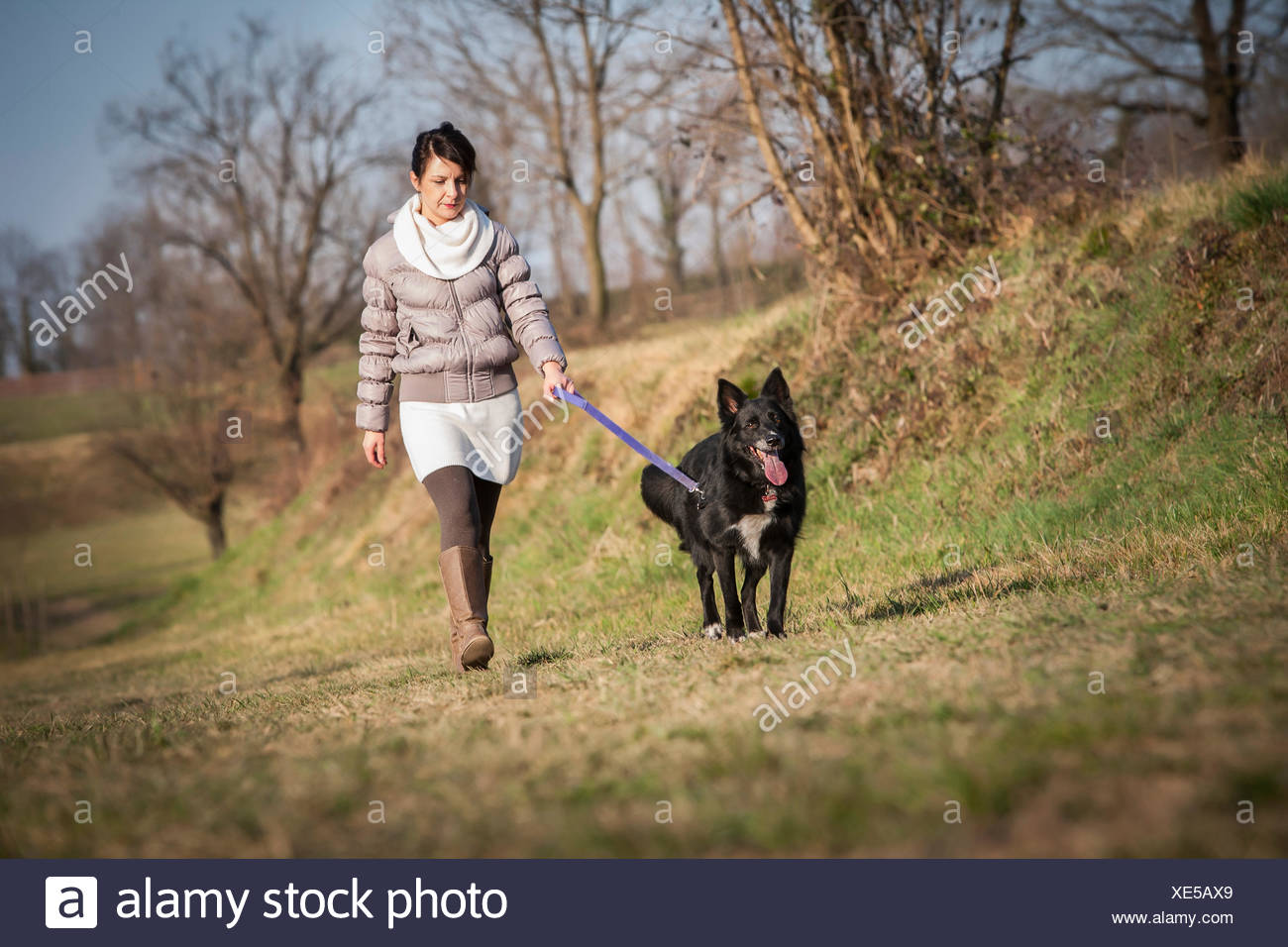 Mid adult woman walking her dog in field - Stock Image