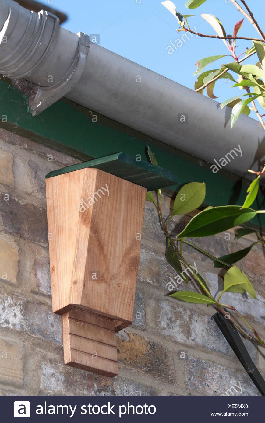 bat box high under eaves of house in garden for roosting bats uk