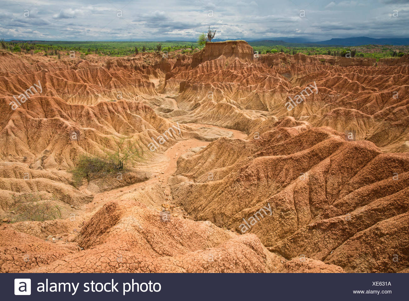 South America, Latin America, Colombia, nature, Tatacao, desert, rock formations, Huila, erosion, national park, - Stock Image