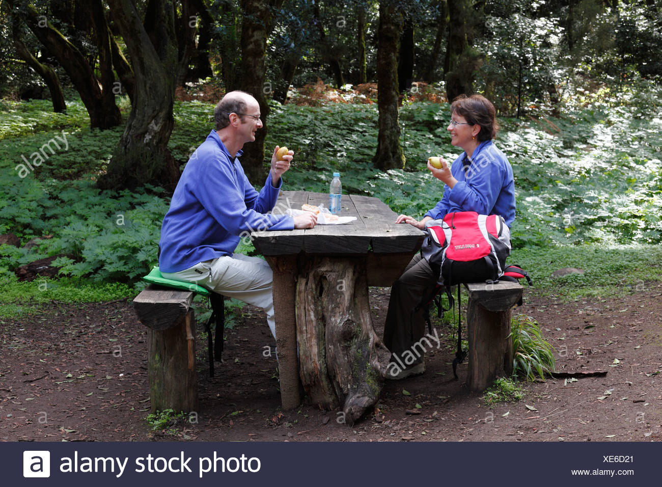 Man and woman having a rest at a wooden table in a laurel forest, Garajonay National Park, La Gomera, , Spain, Europe Stock Photo