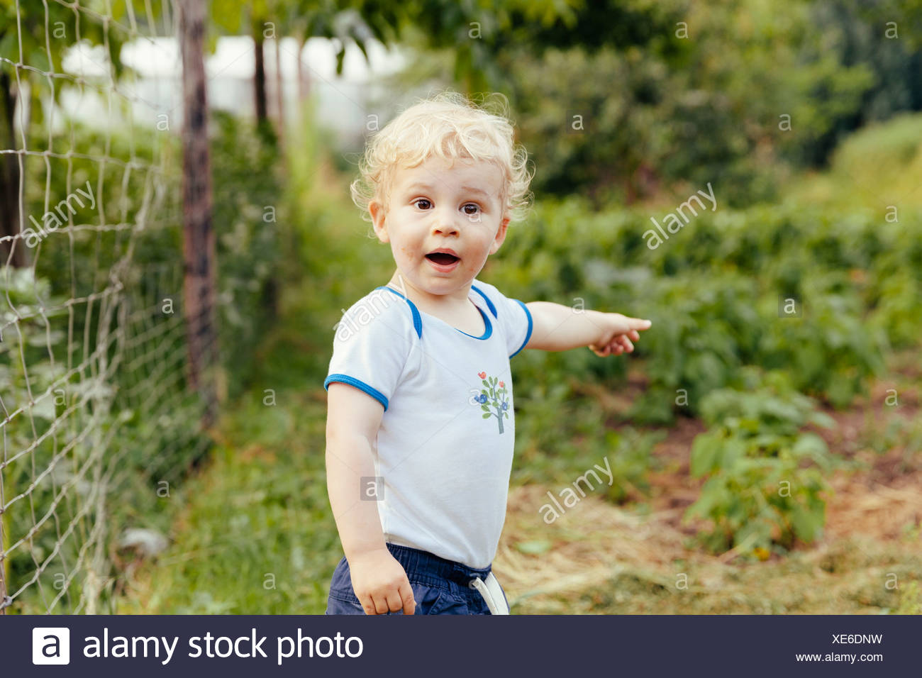 Toddler pointing at something in vegetable garden - Stock Image