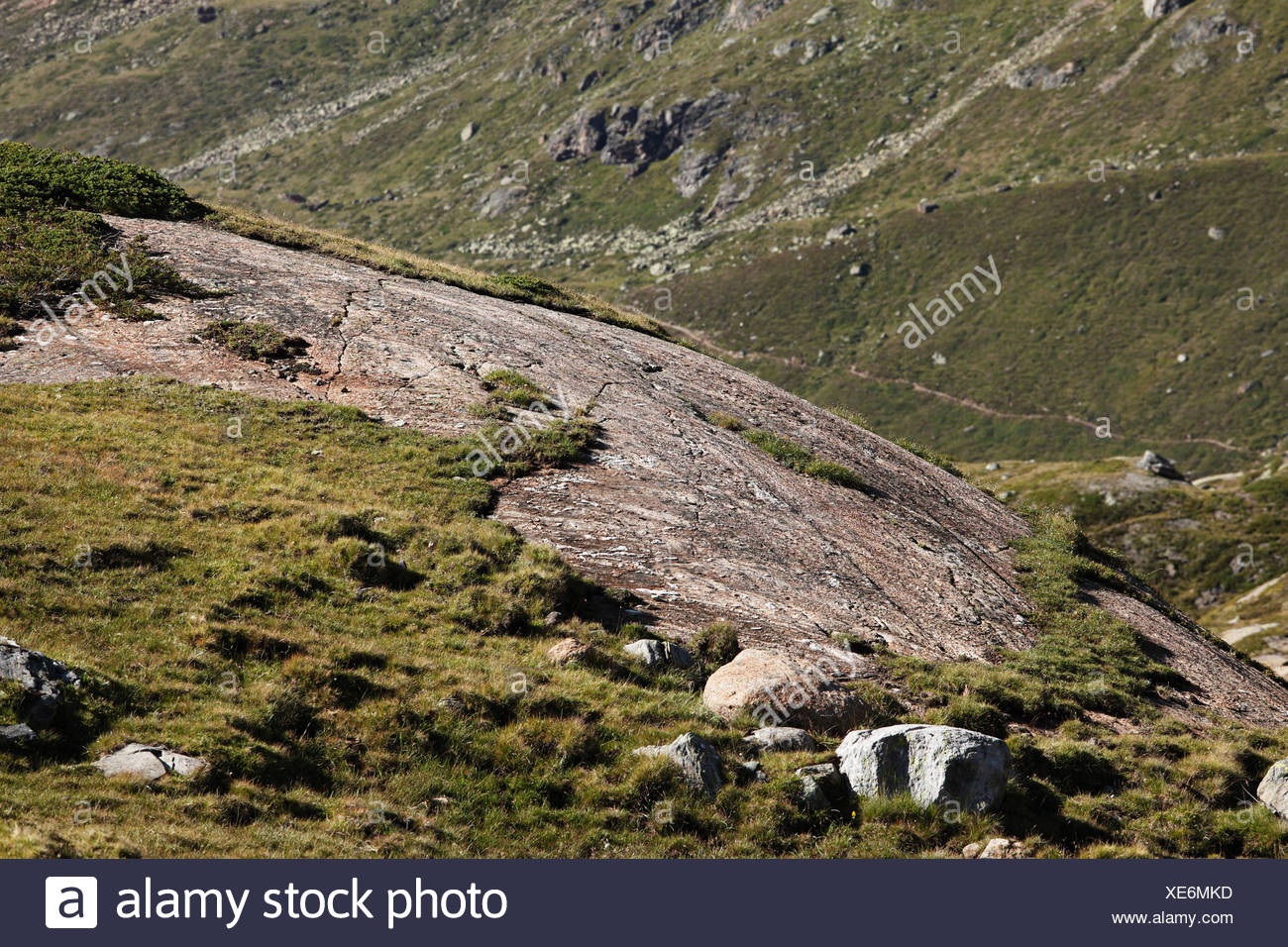 Glacier-polished rock, Kaunertal, Oetztal Alps, Tyrol, Austria, Europe - Stock Image