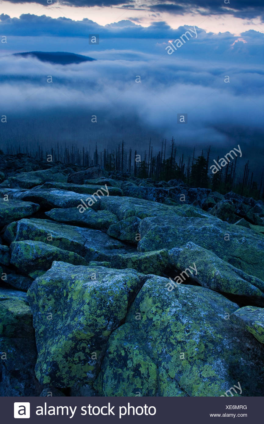 Cloudy mood on the peak of Lusen Mountain, Bavarian Forest National Park, Bavaria, Germany, Europe Stock Photo
