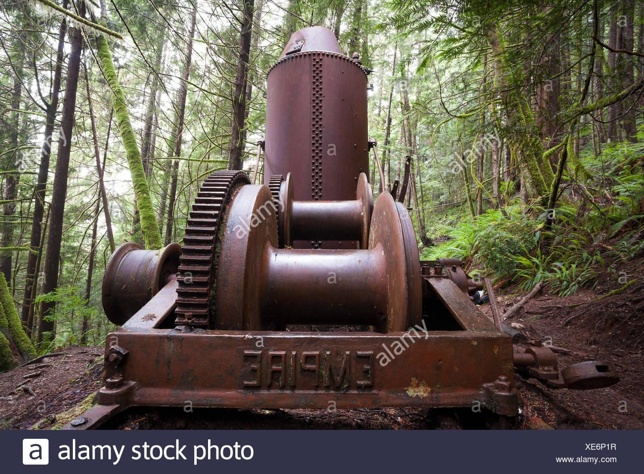 Metal logging 19