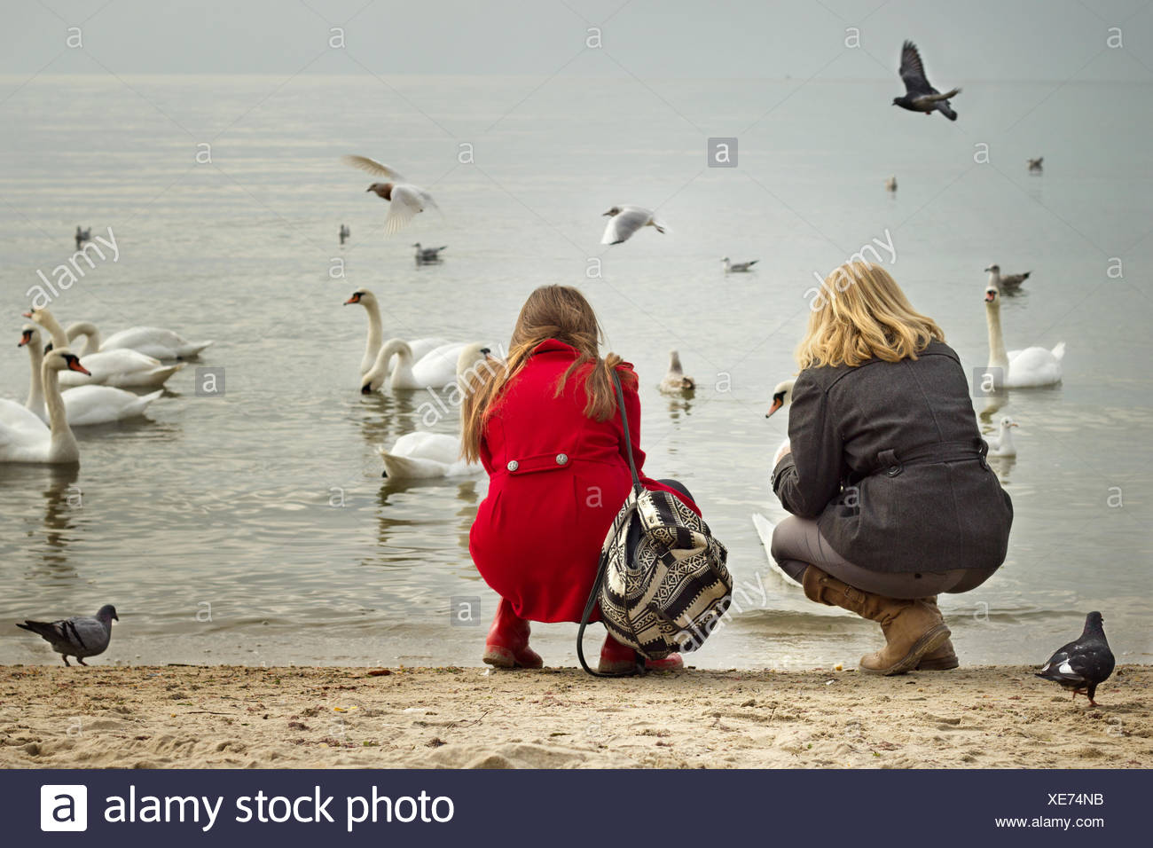 Bulgaria, Varna, Two girls (12-13, 16-17) on beach looking at birds - Stock Image
