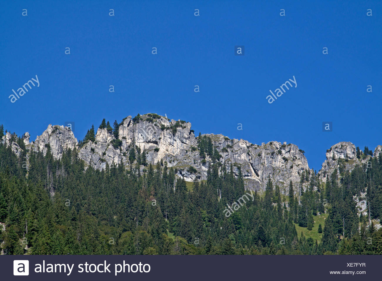 pürschling in the ammergau alps - Stock Image