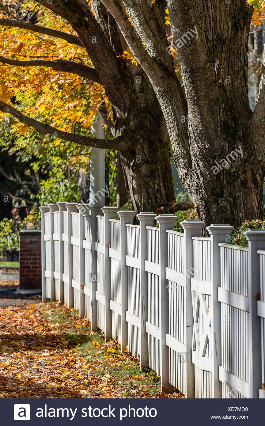 Charming white picket fence with autumn color, Woodstock, Vermont, USA - Stock Image