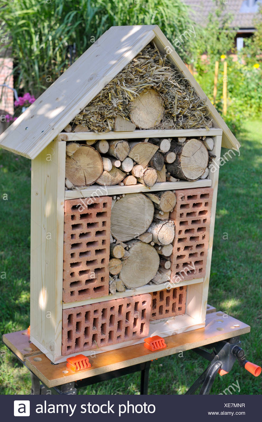 Insect hotel - Stock Image