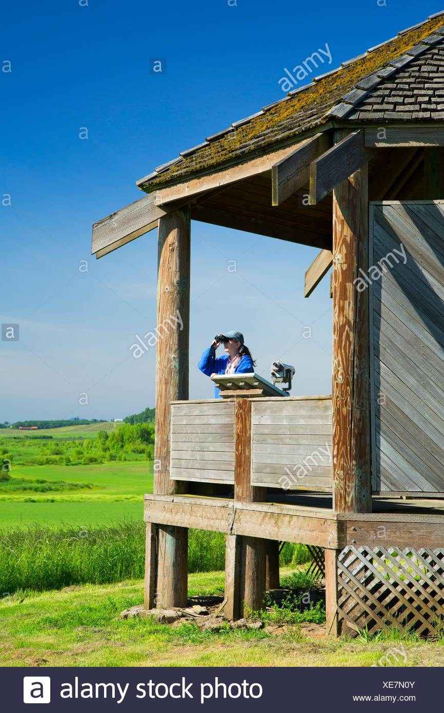 Observation shelter, Baskett Slough National Wildlife Refuge, Oregon. - Stock Image
