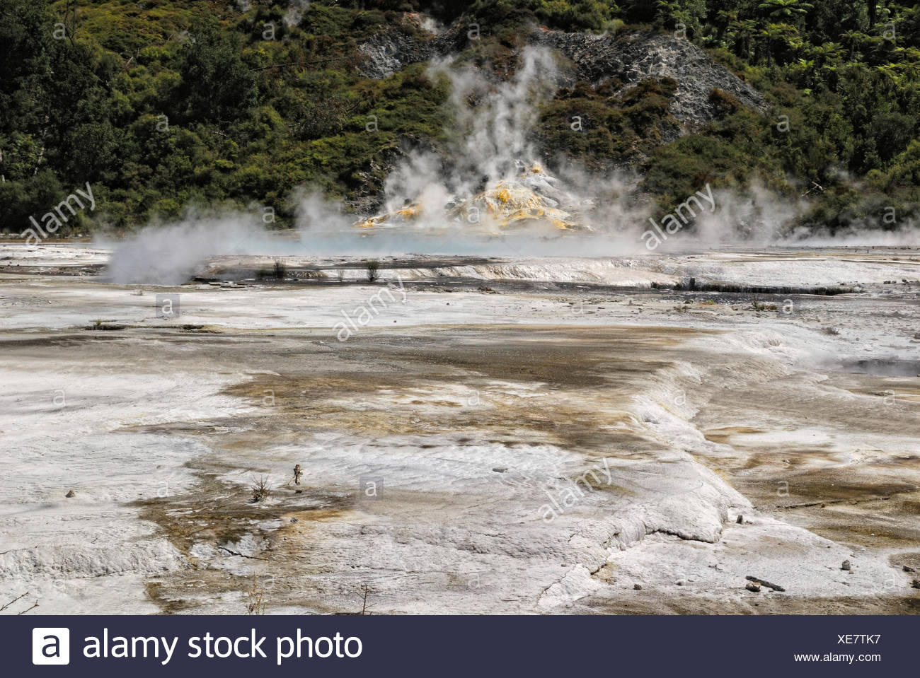 Artists Palette, Orakei Korako Cave and Thermal Park, Hidden Valley, Taupo, Rotorua, North Island, New Zealand - Stock Image