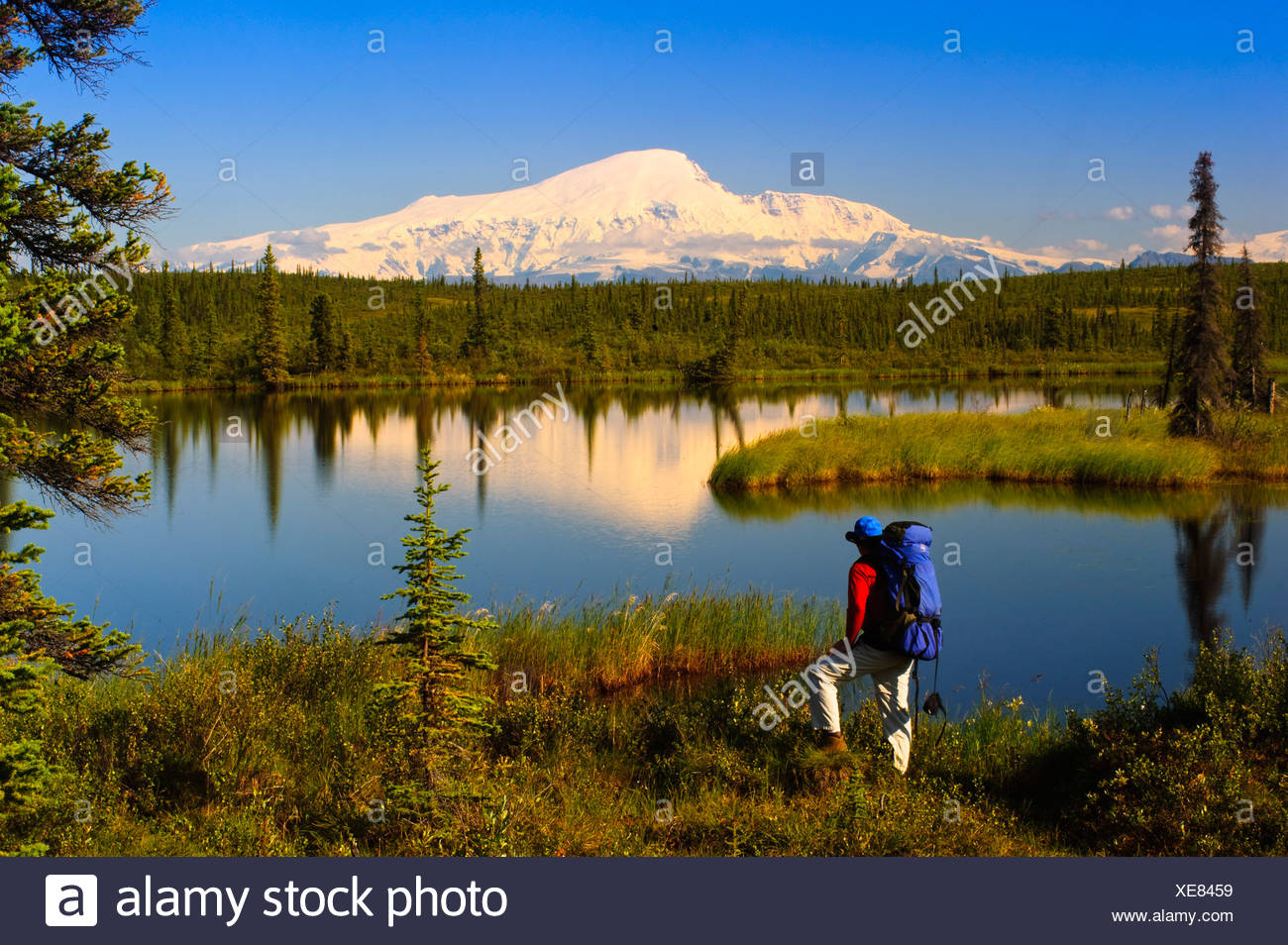 Male backpacker stops to enjoy the view of Mount Sanford, Wrangell Saint Elias National Park, Southcentral Alaska, Summer - Stock Image