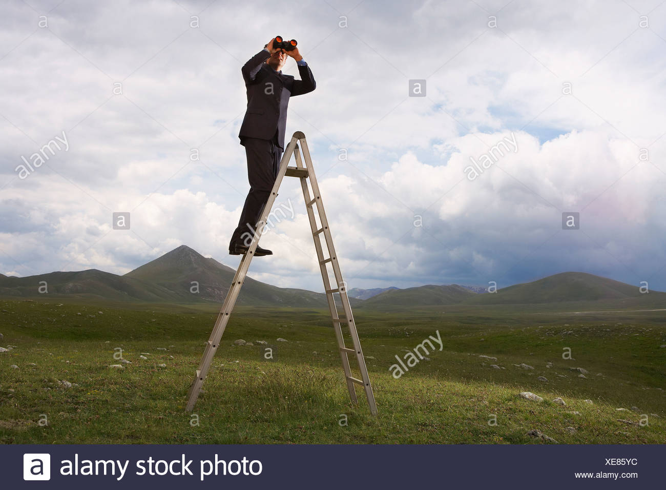Businessman in mountain field on ladder Looking Through Binoculars, low angle view - Stock Image