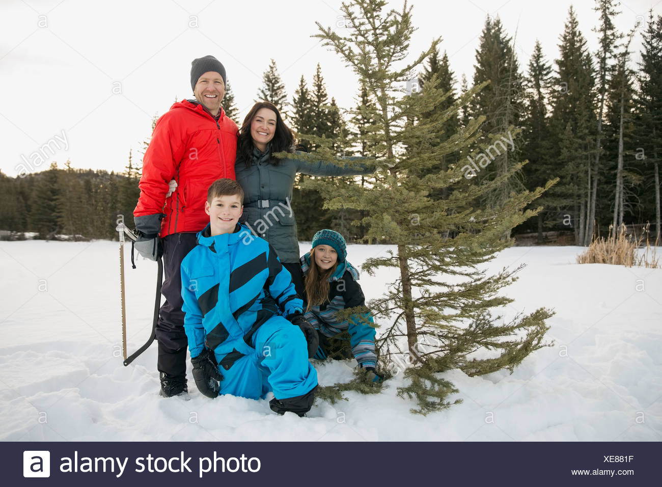 Portrait of two generation family with Christmas tree in snow - Stock Image