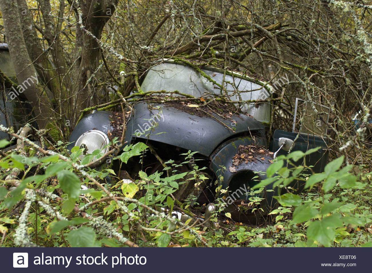 Scrap car (old Dampf-Kraft-Wagen) in forest, Sweden - Stock Image