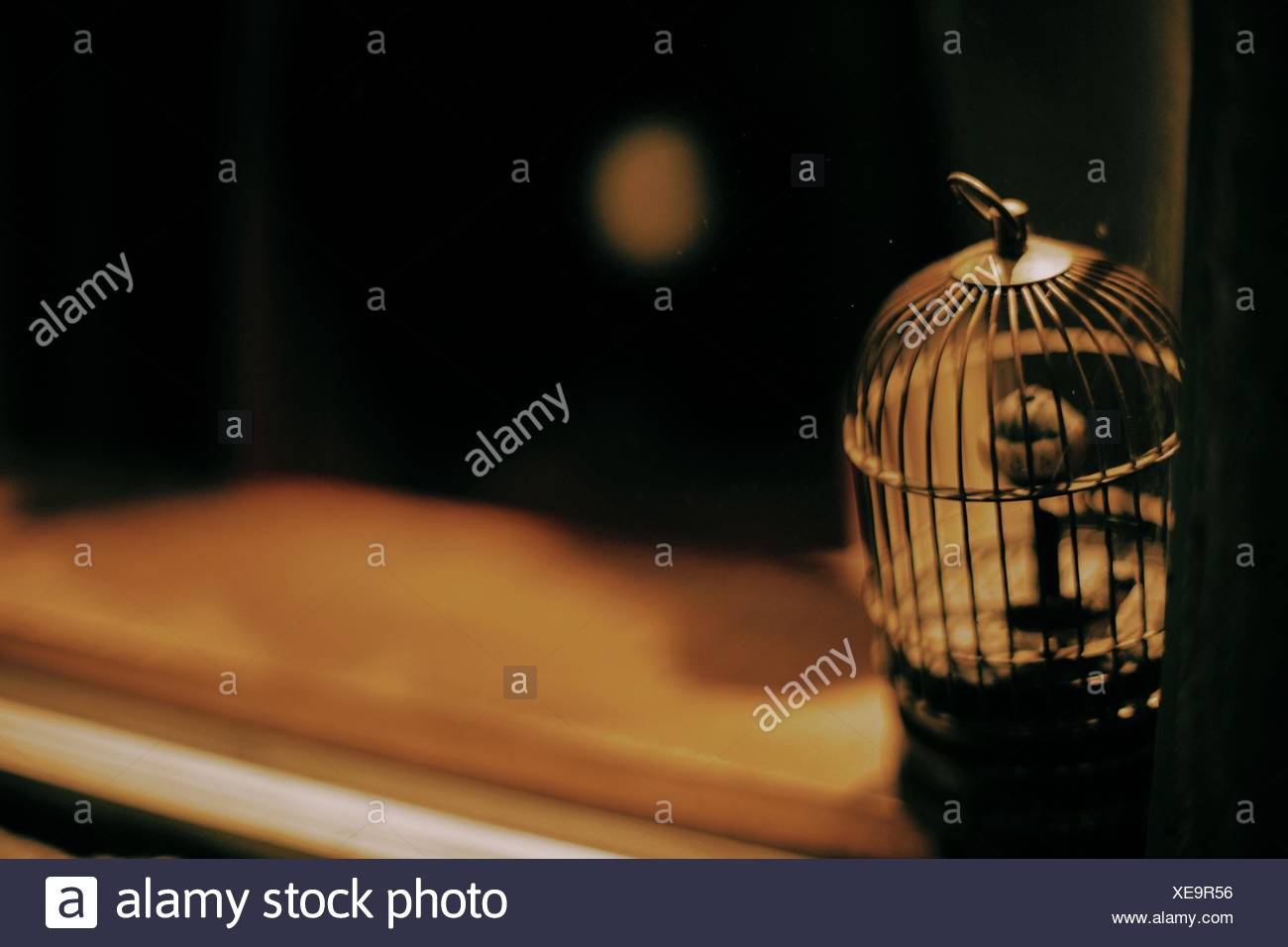 Empty Cage Stock Photos Empty Cage Stock Images Alamy