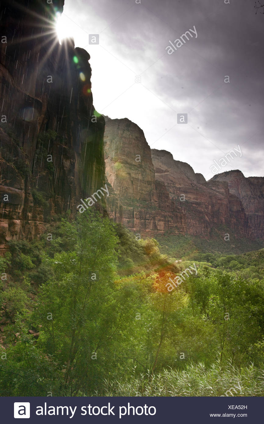 Mystical Zion Canyon - Stock Image
