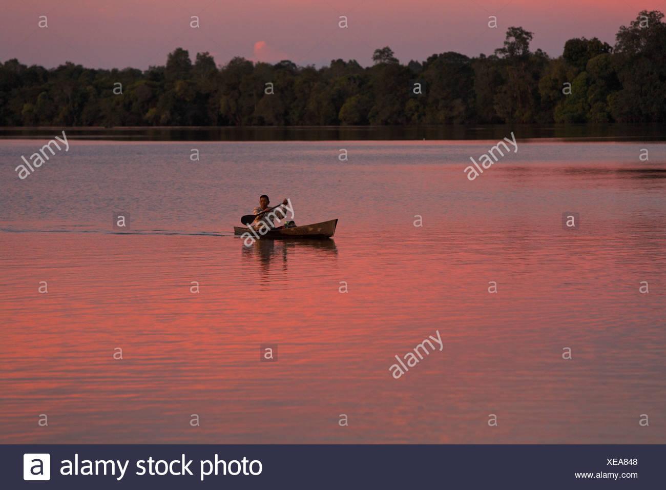 Danau Sentarum Lake, Kapuas Hulu, West Kalimantan, Kalimantan Barat, Borneo, Indonesia, Southeast Asia - Stock Image