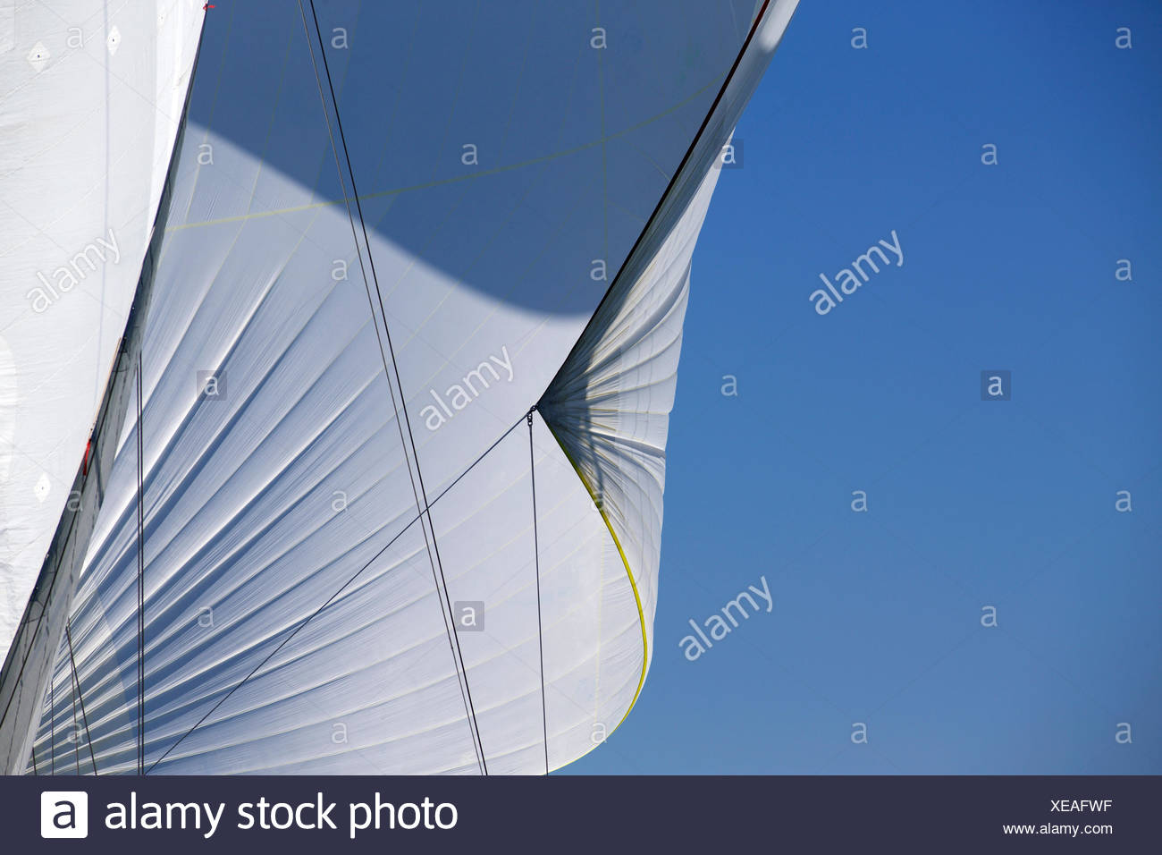 Sail detail and spinnaker of classic racing yacht - Stock Image