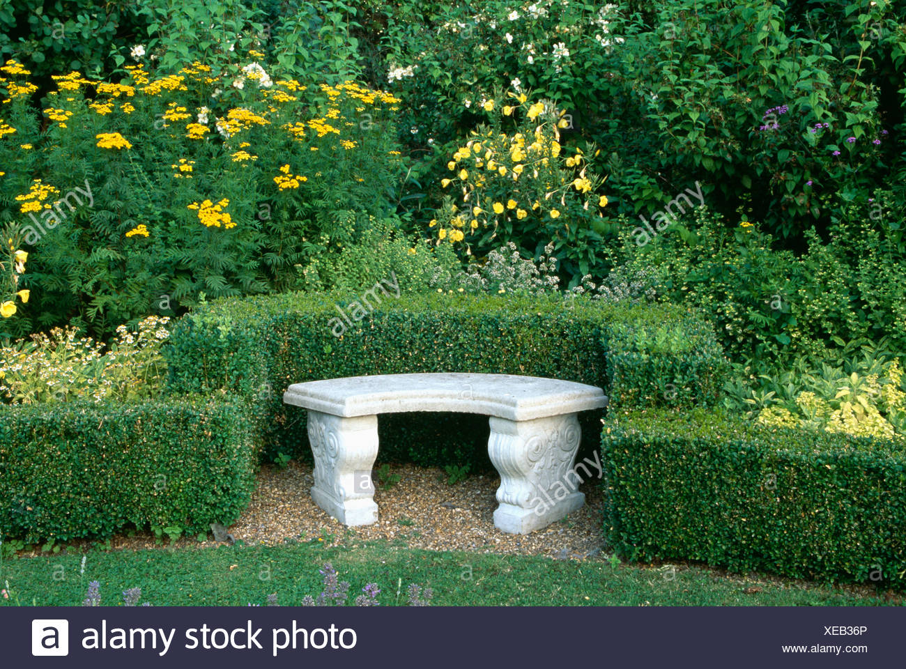 Tremendous Stone Bench In Clipped Buxus Hedge Alcove In Country Garden Forskolin Free Trial Chair Design Images Forskolin Free Trialorg
