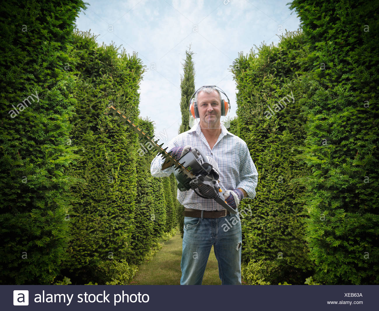 Man holding hedge trimmer in garden - Stock Image