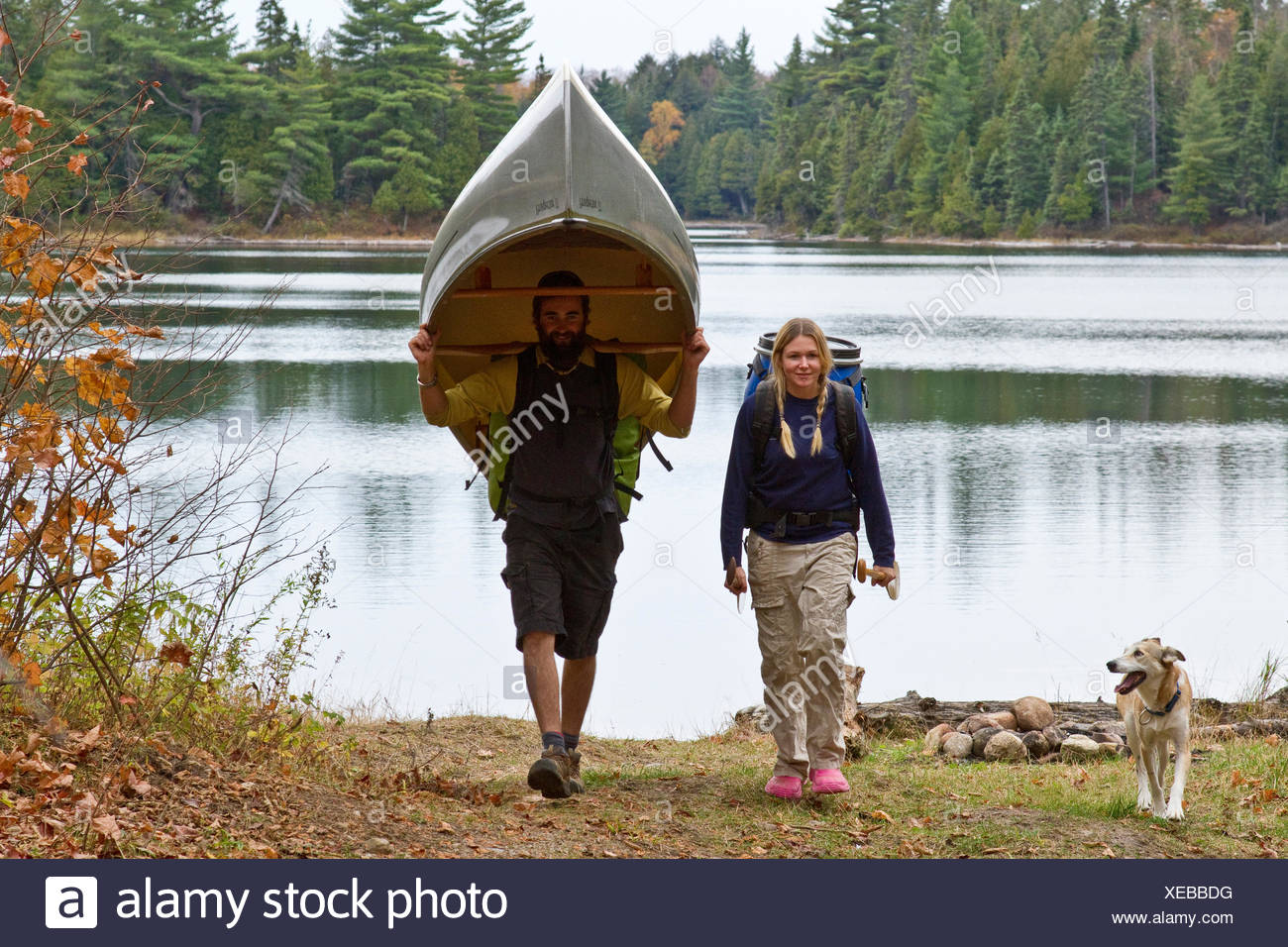Young couple portage canoe from small lake in northwestern end of Algonquin Park, Ontario, Canada. - Stock Image