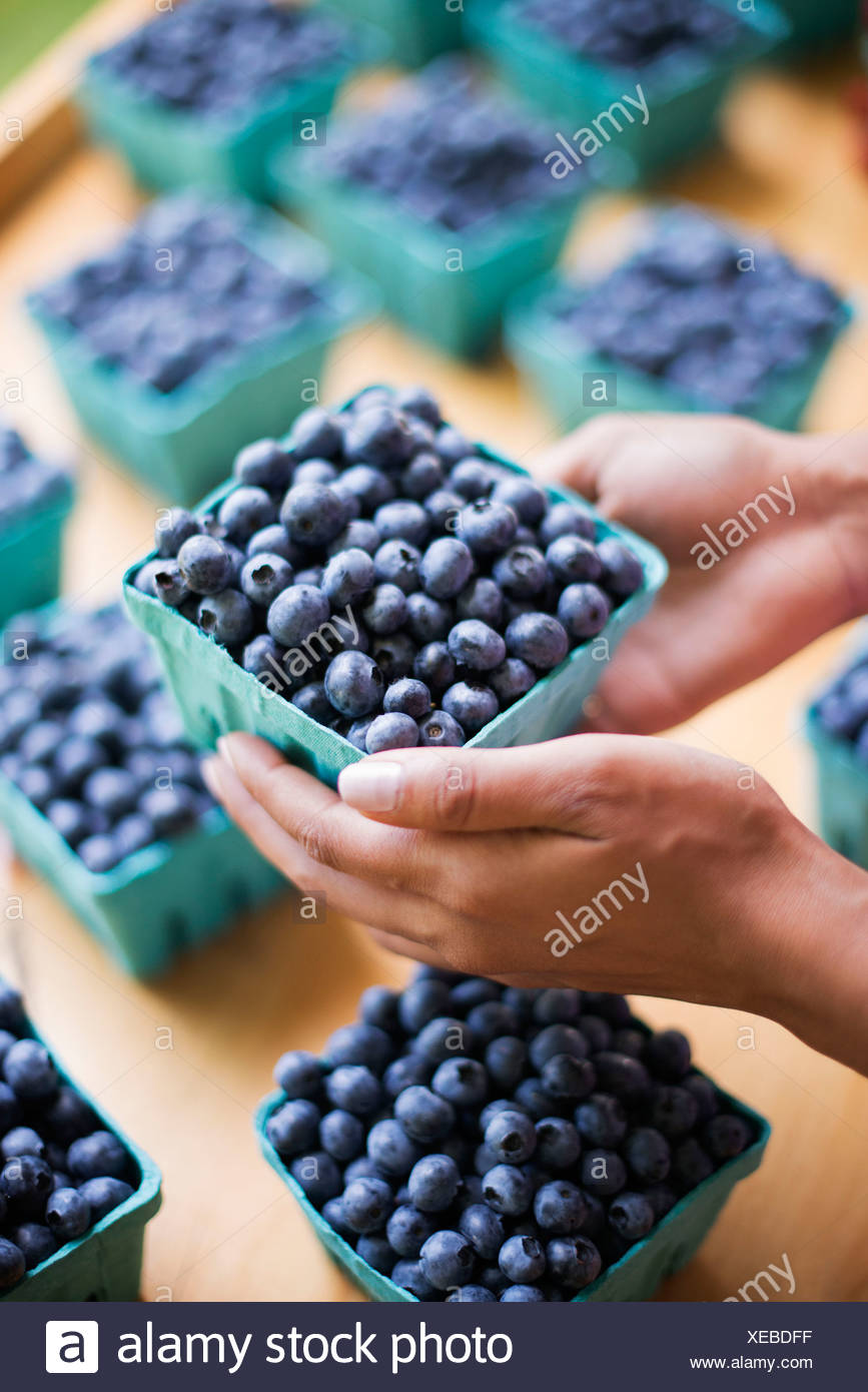 Organic fruit displayed on a farm stand. Blueberries in punnets. - Stock Image