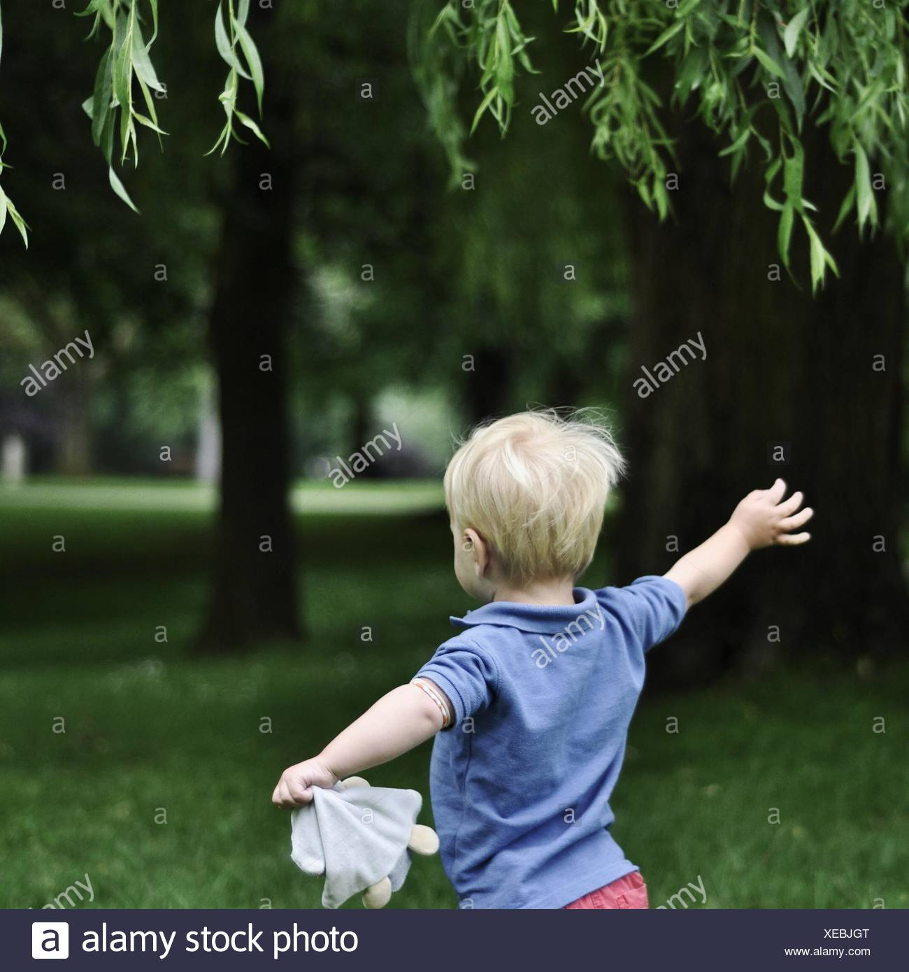 Rear view of little boy running in park with arms outstretched Stock Photo