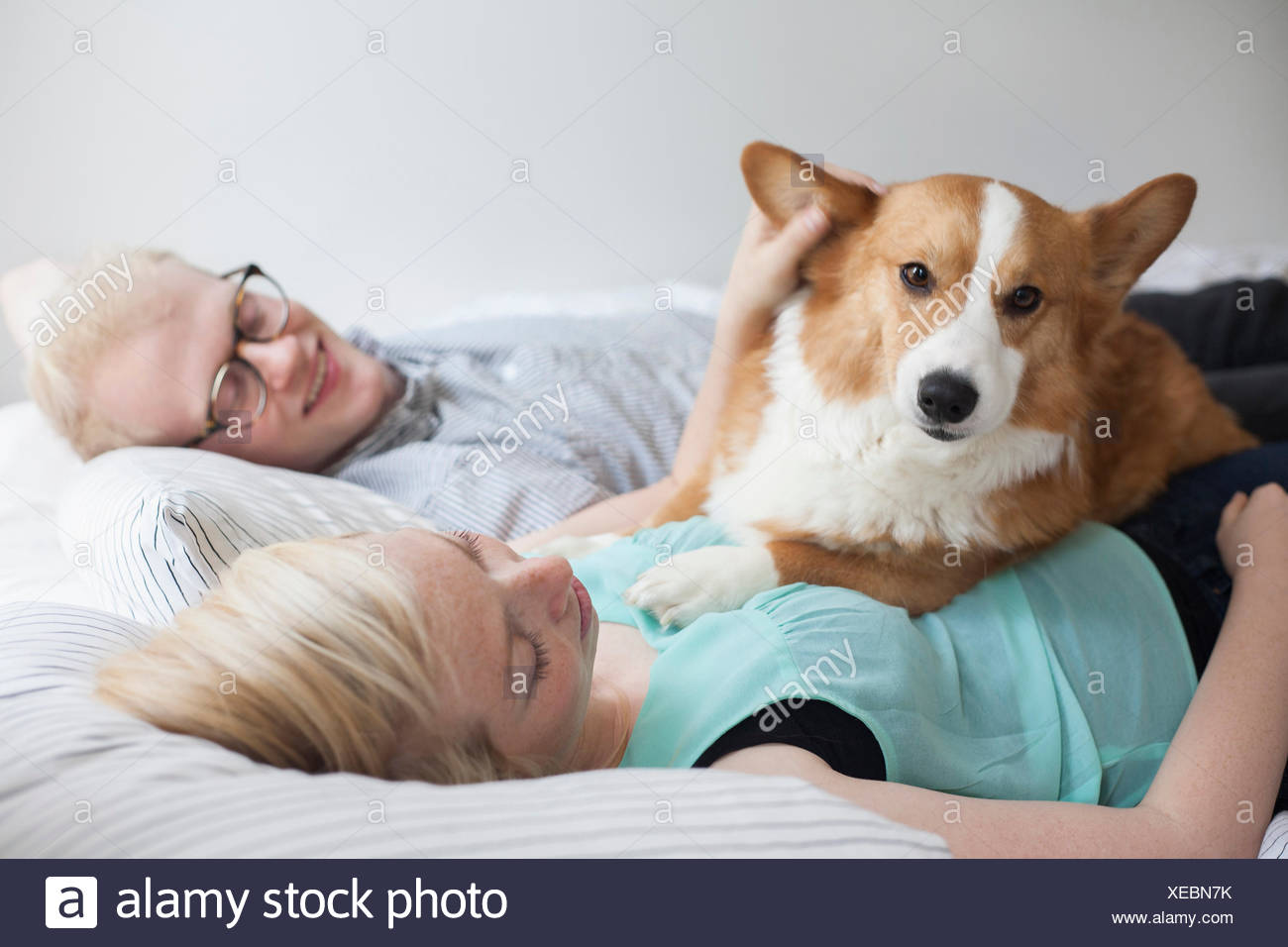 Cute corgi dog lying on bed with young couple - Stock Image