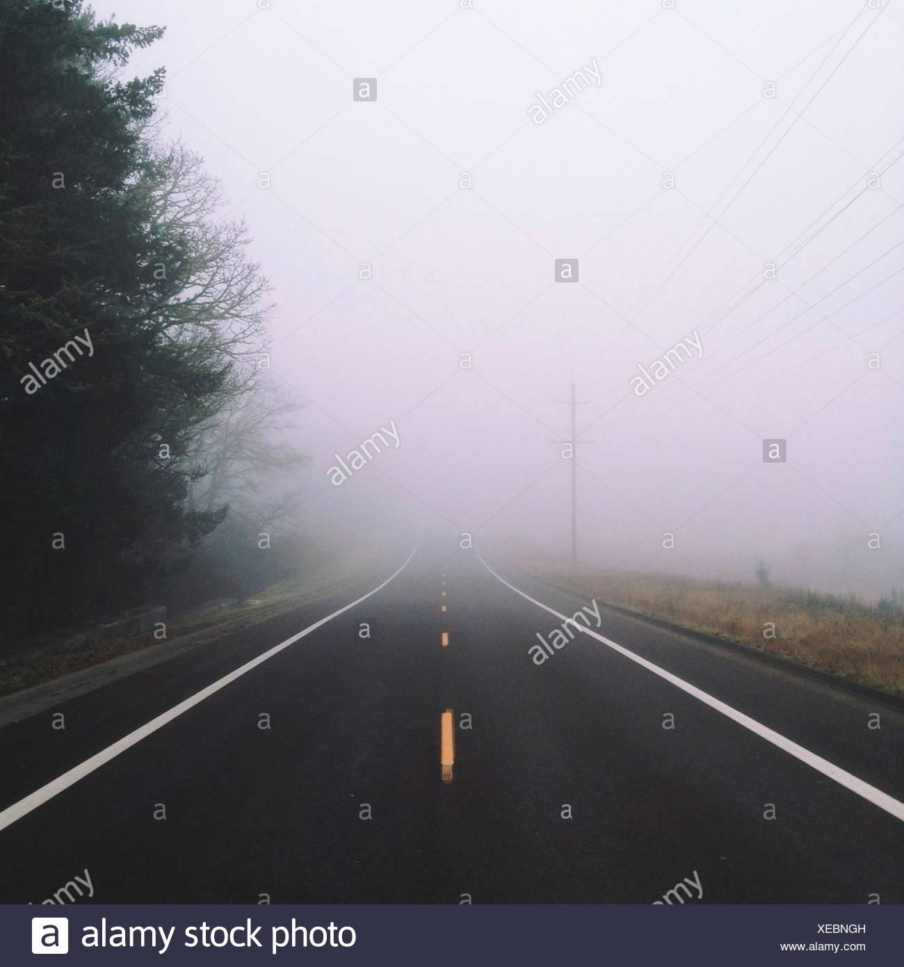 Fog down road - Stock Image