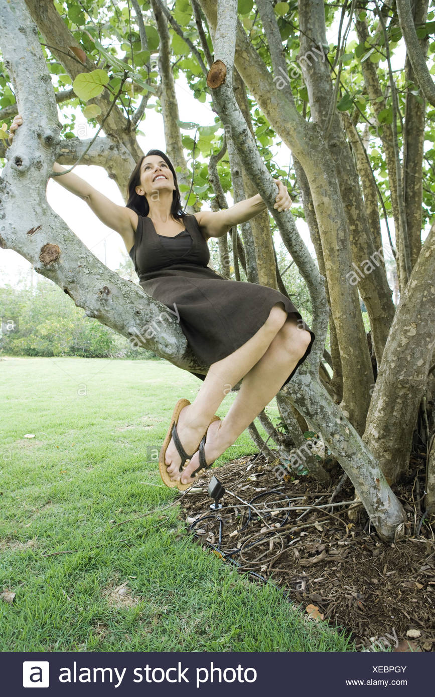Woman sitting in tree, smiling with head back, full length - Stock Image