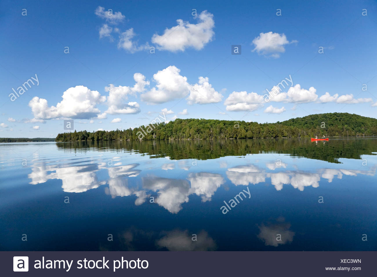 Senior couple canoeing on Smoke Lake, Algonquin Park, Ontario Stock Photo