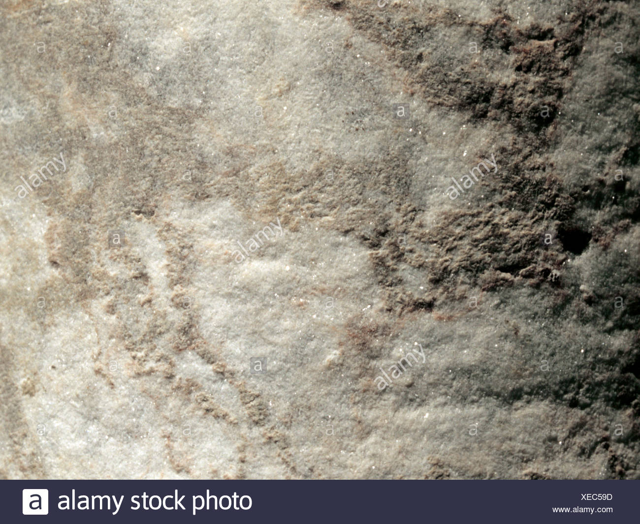 Anhydrite, Germany, Northern Germany - Stock Image