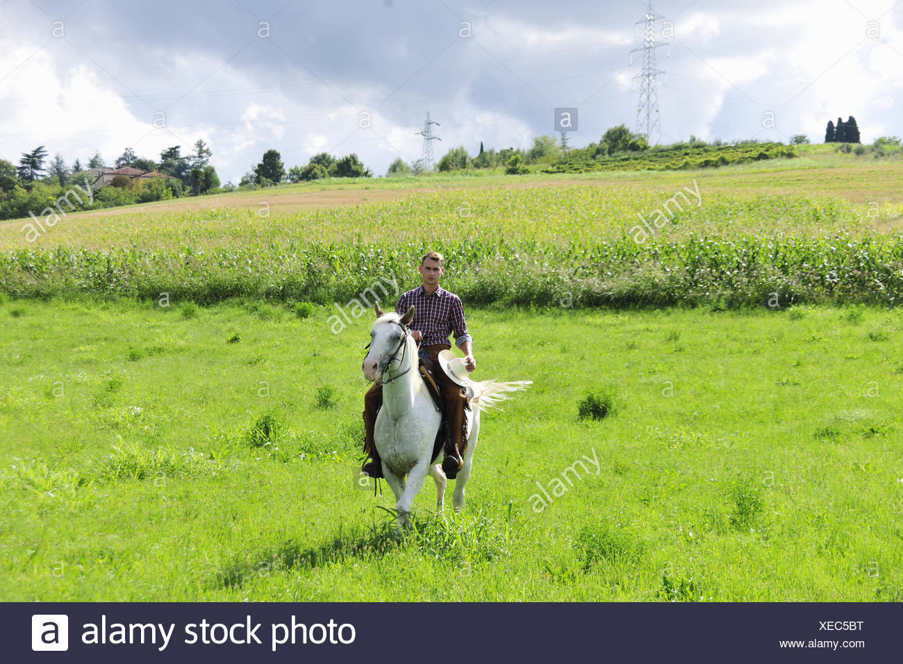 Young man holding cowboy hat galloping on horse in field - Stock Image