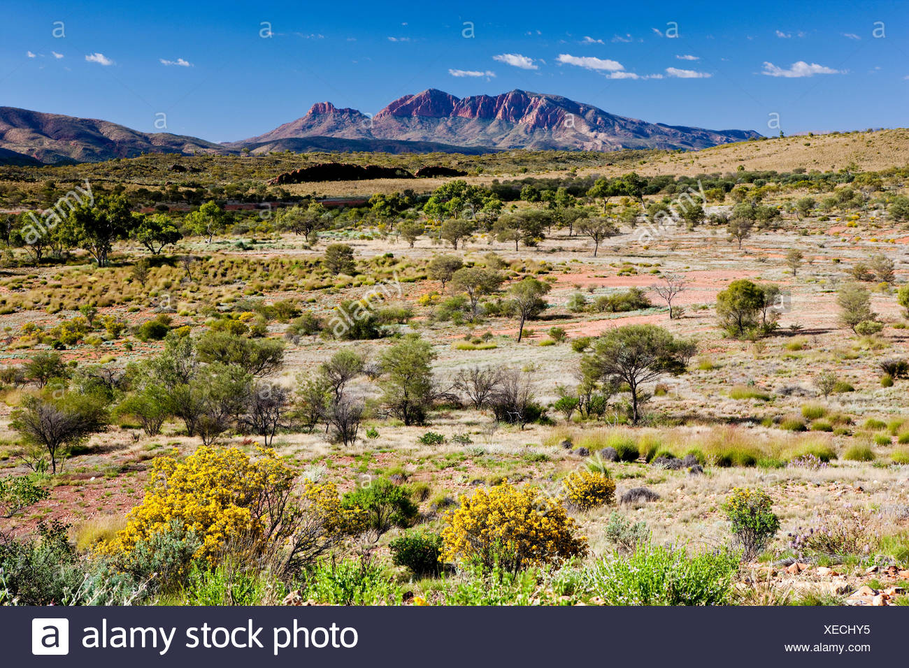 Mt. Sonder, West MacDonnell National Park, Northern Territory, Australia - Stock Image