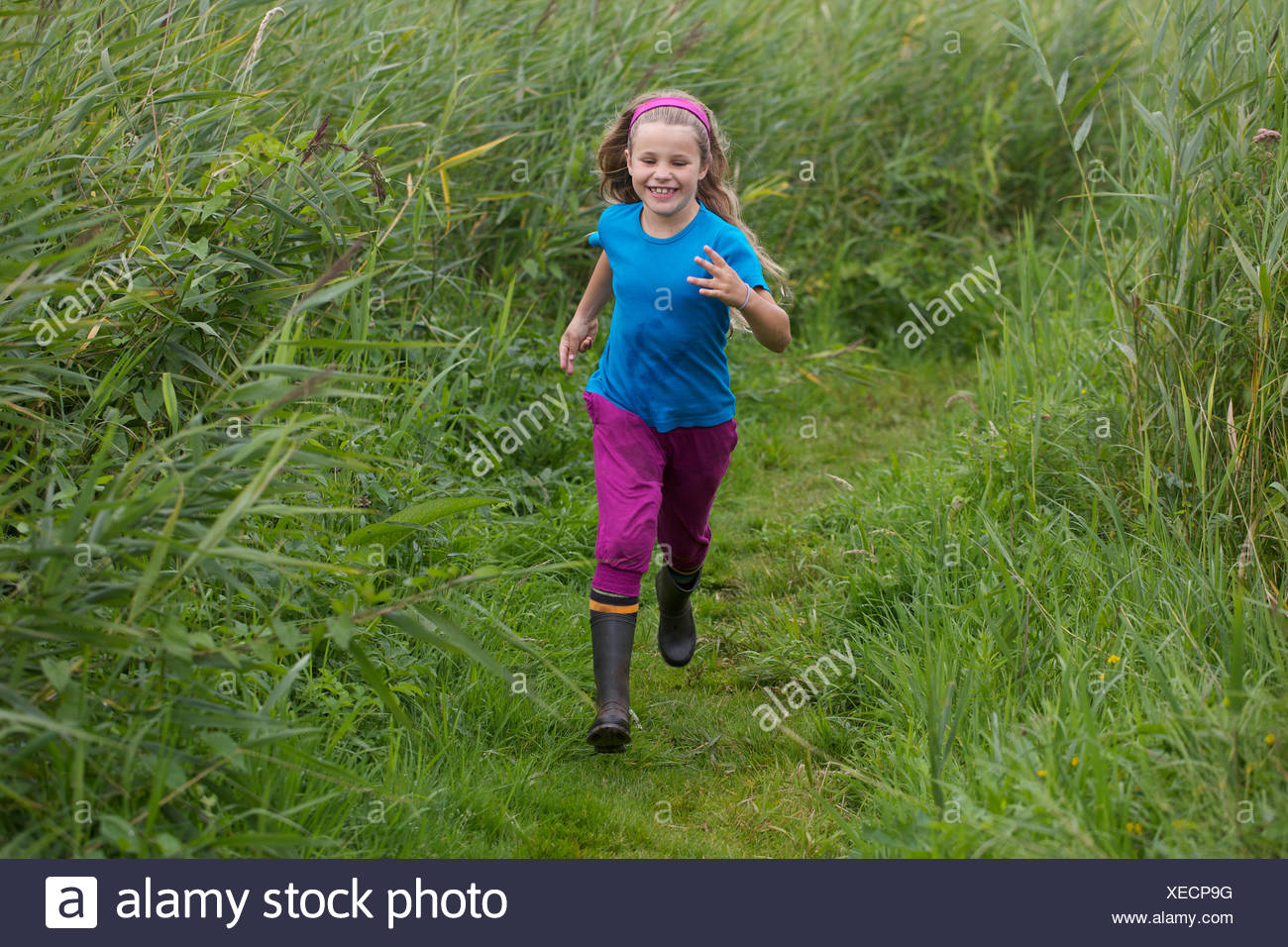 A little girl runs over a path through high reed, model released Stock Photo