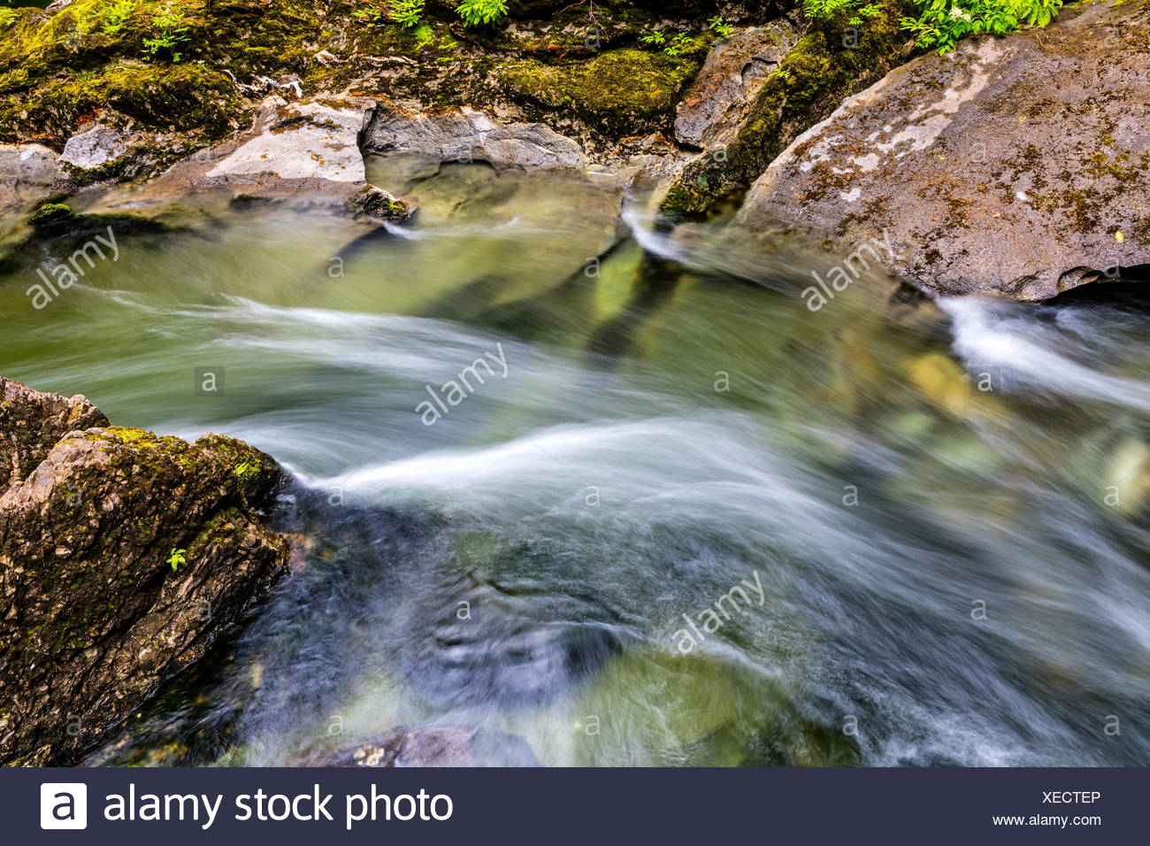 Atluck Creek cutting through the cast limestone creating Huson Natural Bridge Cave in Little Huson Cave Regional Park, Northern Vancouver Island, British Columbia, Canada - Stock Image