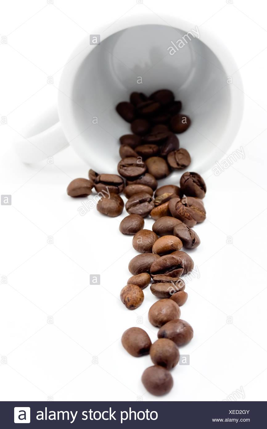 Coffe beans on white mug - Stock Image